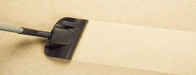 Productos para limpiar alfombras en casa stunning - Productos para limpiar alfombras ...